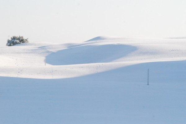 December 2010 Snow shot of the Old Course